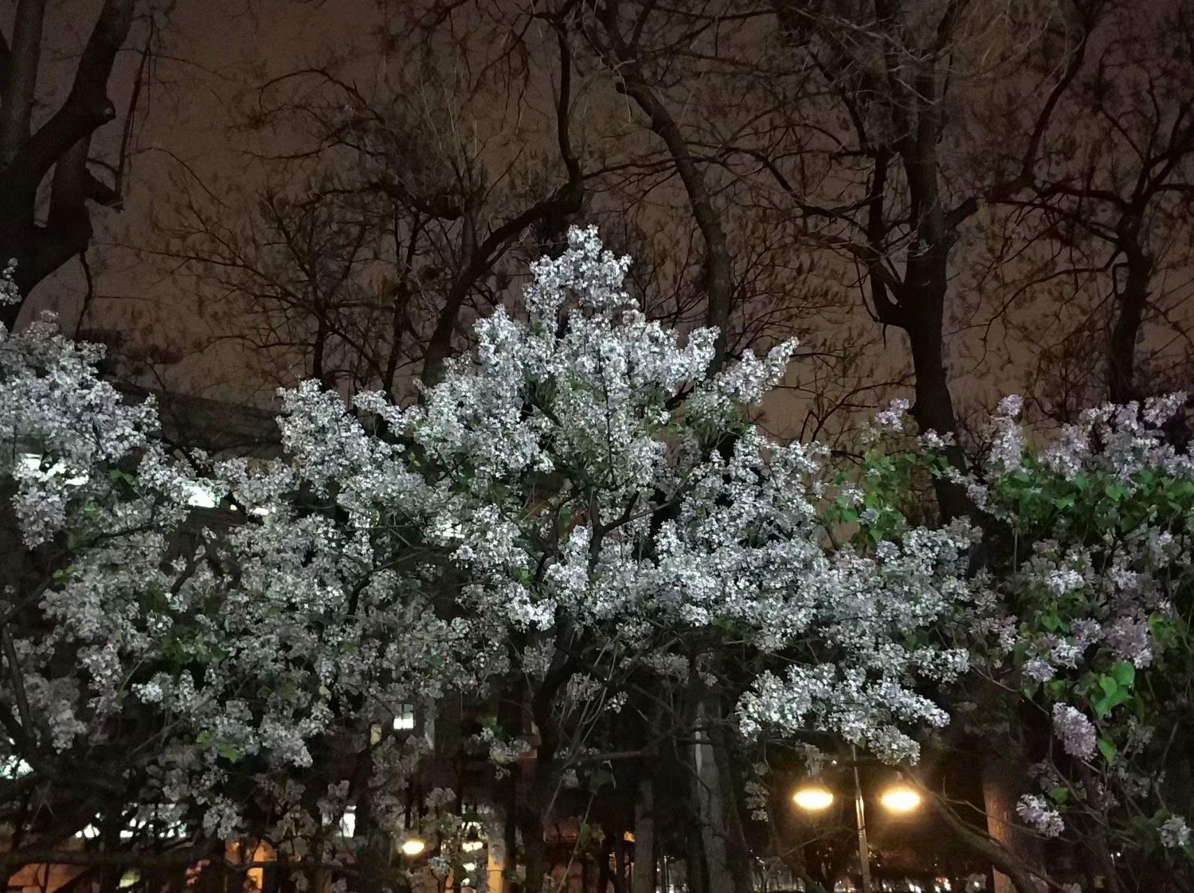 一场春雨一场寒.jpg